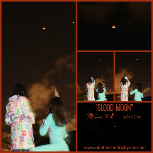 Blood moon pics from Miami Florida. www.abettermedaybyday.com